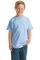 Hanes  -  Youth Beefy-T Born to Be Worn 100% Cotton T-Shirt