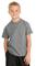 Hanes - Youth Tagless 100%  Cotton T-Shirt